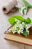 Bouquet of lily of the valley with a vintage book Royalty Free Stock Images