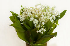 Bouquet of lily-of-the-valley on white Stock Photos