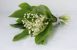 Bouquet of lily of the valley Stock Images
