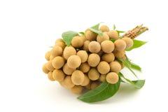 Longan fruits isolated white background stock images