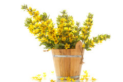 Bouquet with loosestrife in wooden bucket Stock Images