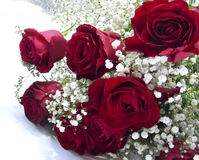 Bouquet for lover Royalty Free Stock Images