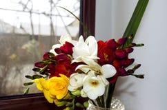Bouquet lumineux de freesia odorant sur un rebord de fenêtre Photo libre de droits