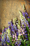 Bouquet of lupines on wooden board Royalty Free Stock Image