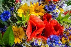 Bouquet luxuriant d'été des wildflowers avec des pavots, marguerites, plan rapproché de bleuets photos libres de droits