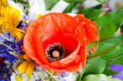 Bouquet luxuriant d'été des wildflowers avec des pavots, marguerites, plan rapproché de bleuets images stock