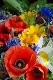 Bouquet luxuriant d'été des wildflowers avec des pavots, marguerites, plan rapproché de bleuets photographie stock