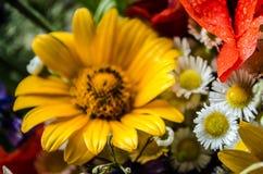 Bouquet luxuriant d'été des wildflowers avec des pavots, marguerites, plan rapproché de bleuets image stock