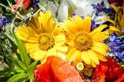Bouquet luxuriant d'été des wildflowers avec des pavots, marguerites, plan rapproché de bleuets photo stock