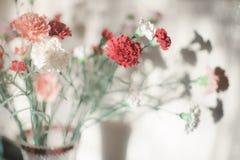 Bouquet luxuriant des asters de fleurs images libres de droits