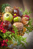 Bouquet made of autumn plants. Stock Photography