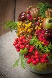 Bouquet made of autumn plants. Stock Photos
