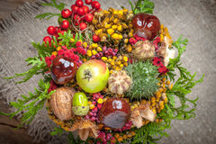 Bouquet made of autumn plants. Royalty Free Stock Image