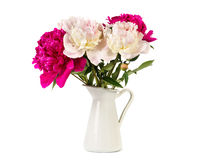 Bouquet of magnificent peonies Stock Image