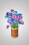 Bouquet of many beautiful multi-colored cornflowers flowers Stock Photography