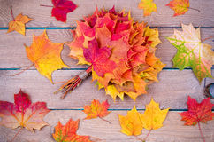 Bouquet from maple leaves Royalty Free Stock Photography