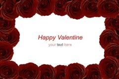 Bouquet marron de roses rouges comme cadre sur le fond blanc Photos stock