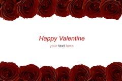 Bouquet marron de roses rouges comme cadre sur le fond blanc Photographie stock libre de droits