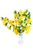 Bouquet Marsh Marigold  Yellow wildflowers in vase  . Stock Photos