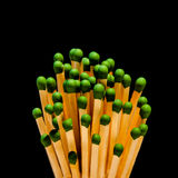 Bouquet of Matches Stock Photos