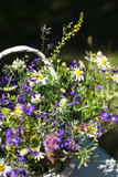 Bouquet of meadow flowers in a basket Stock Images