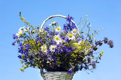 Bouquet of meadow flowers in a basket Stock Photo