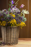 Bouquet of medicinal herbs in basket Royalty Free Stock Photography