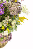 Bouquet of medicinal herbs Royalty Free Stock Photography