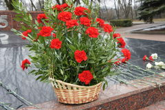 Bouquet at the memorial. Red flowers in a basket on memareale memory of the dead in the war Royalty Free Stock Images