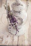 Bouquet of mentha pulegium herbs Stock Photography