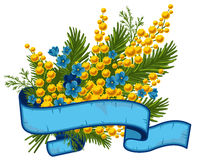 Bouquet of mimosa and forget-me-not Stock Photo