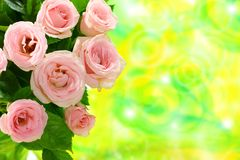 Bouquet of miniature roses. Stock Photography