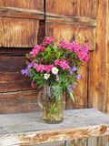 Bouquet of mountain flowers Royalty Free Stock Images
