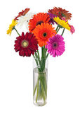 Bouquet from multi colored gerbera flowers. Royalty Free Stock Photo