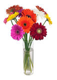 Bouquet from multi colored gerbera flowers. Royalty Free Stock Photography