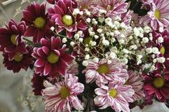 Bouquet multi de couleur avec une telle fleur comme le dahlia et le chrysanthème Photographie stock