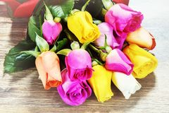 Bouquet of multicolor roses, closeup. St Valentine`s greeting ca Stock Image
