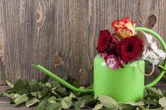Bouquet of multicolor roses in watering can over wooden backgrou Stock Photo