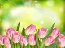 Bouquet of multicolor tulips. EPS 10 Stock Image
