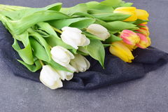 Bouquet of multicolored tulips on a grey cloth. Spring flowers. Romance Royalty Free Stock Photo