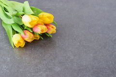 Bouquet of multicolored tulips on a grey cloth. Spring flowers. Romance Royalty Free Stock Photos