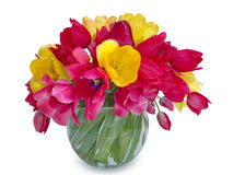 Bouquet of multicolored tulips in a vase Stock Image