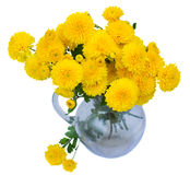 Bouquet of mums in vase. Bouquet of aster and mums in vase  isolated on white background Stock Images
