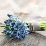 Bouquet of muscari flowers Stock Photo