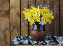 Bouquet of narcissuses. Still life with a bouquet of narcissuses Royalty Free Stock Photos