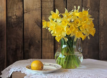 Bouquet of narcissuses Stock Photo