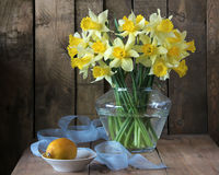 Bouquet of narcissuses Royalty Free Stock Photo