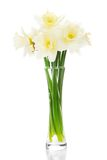 Bouquet of narcissuses in a vase Royalty Free Stock Photos