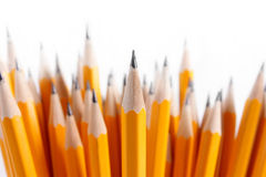 Bouquet of newly sharpened pencils Royalty Free Stock Image
