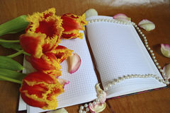 Bouquet and notes royalty free stock photo